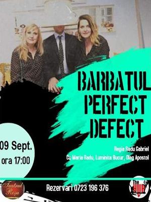BARBATUL PERFECT DEFECT